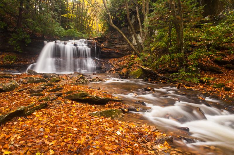 Holly River LF Upper Falls 8636