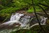 Fall Branch Falls 0793