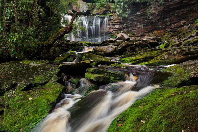 Elakala Falls 5134