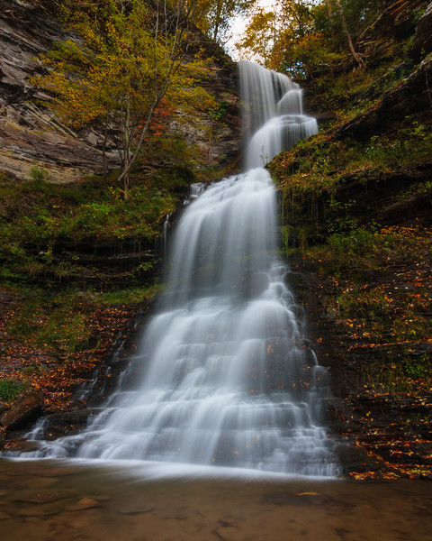 Cathedral Falls 5145