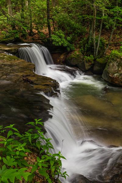 Lower Falls HR 1269