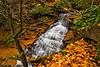 Laurel Falls 9990L