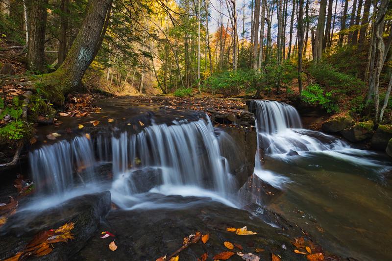 Lower Falls Falls Run 3326L