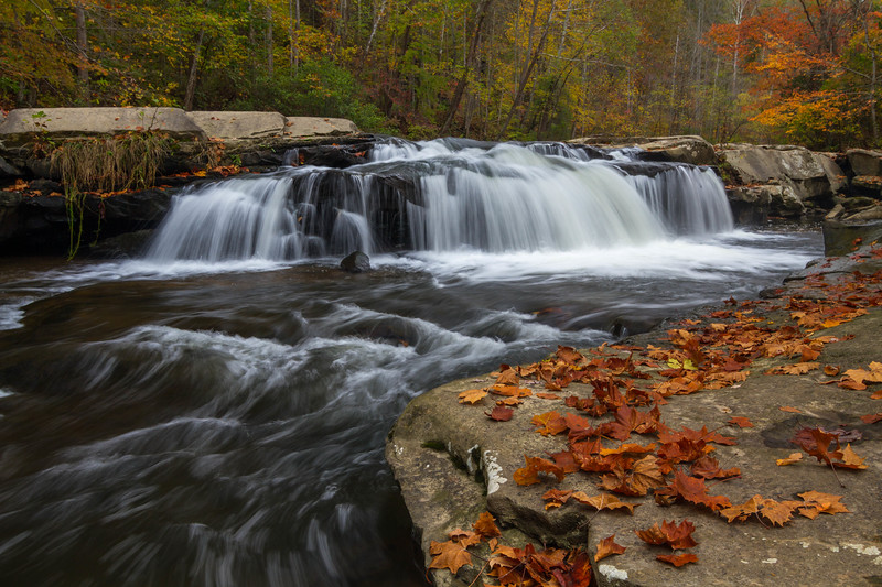 Westerly Falls 8781
