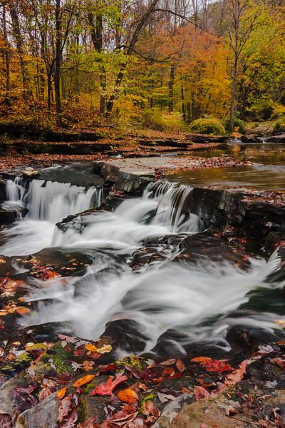 Dunloup Creek 0808