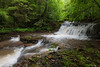 Fall Branch Falls 0822