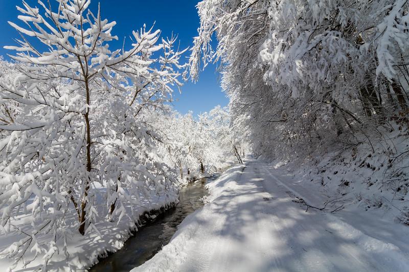 Cider Run Road Winter  9399