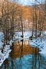 WV Fork Dunkard Creek V
