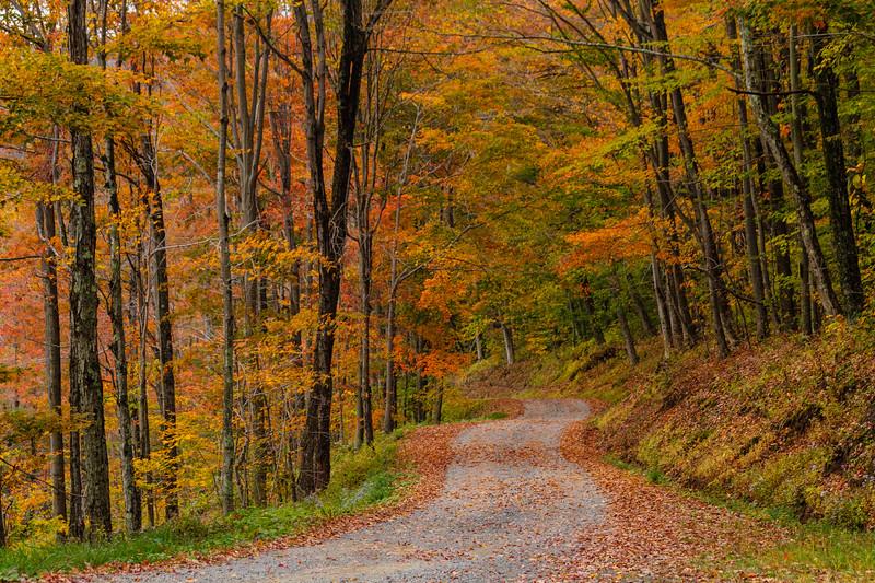 Close Mountain Road 8202