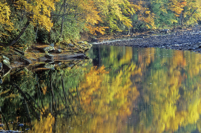 Dry Fork Reflection 2003