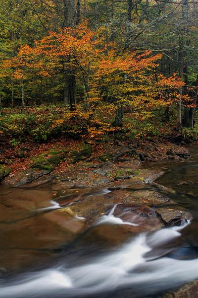 Seneca Creek Fall 03