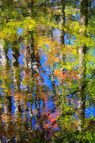 Otter Creek Reflection 7356