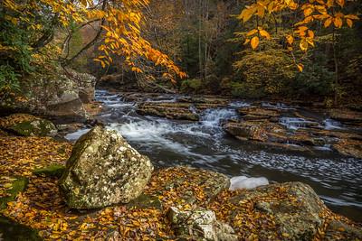 Mill Creek 9975