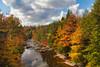 Blackwater River 8282LP