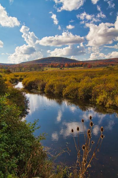 Blackwater River 8319LP