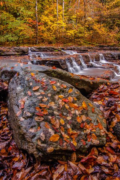 Campbell Falls 4946