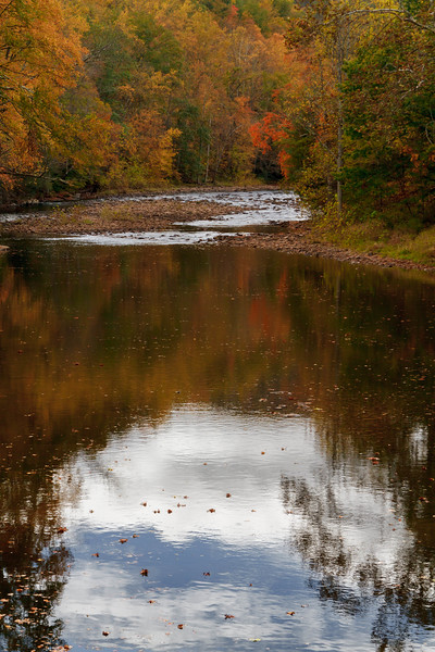 Dry Fork Reflection 8702