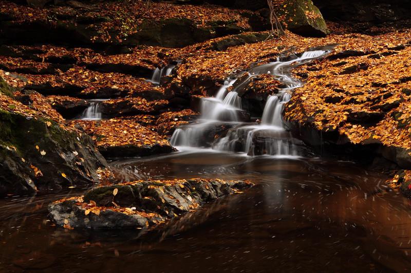Glade Creek 0825