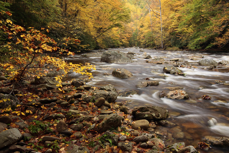 Otter Creek 0973