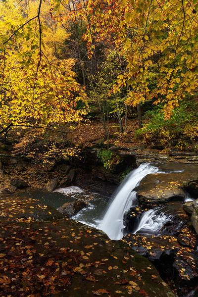Mill Creek Falls 9901