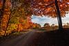 Lynn Camp Road