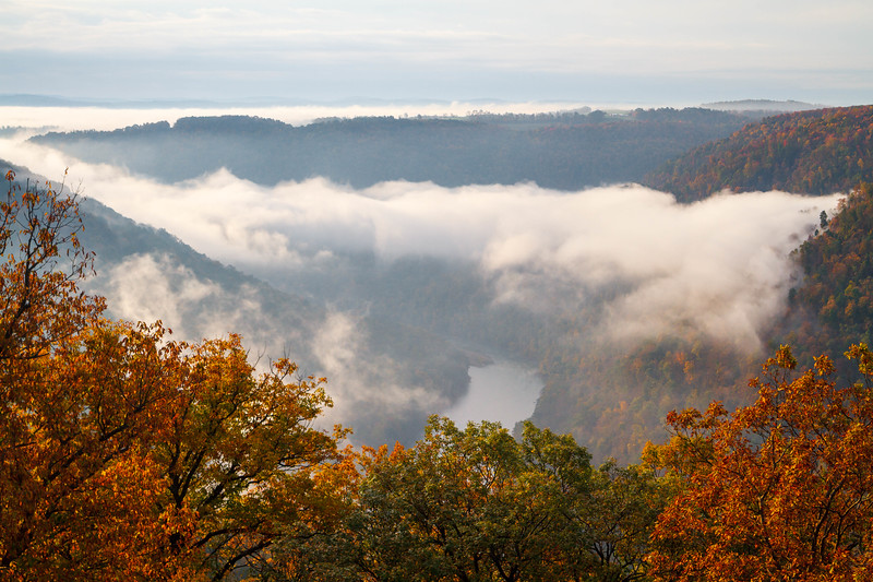 Coopers Rock Morning 8850C1