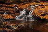 Glade Creek Raleigh 28