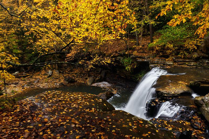 Mill Creek Falls 9899