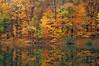 Chestnut Ridge Lake Oct H