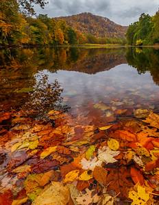 Cheat River Reflection 7980V
