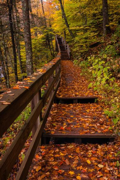 Hills Creek Stairs 01