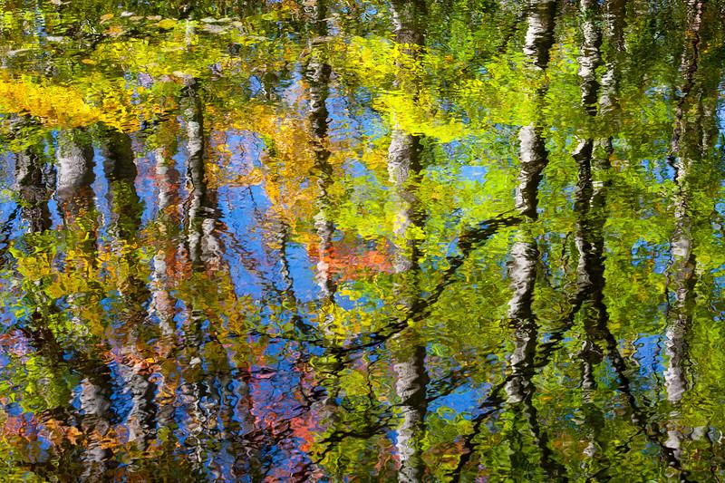 Otter Creek Reflection 7360