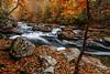 Mill Creek 0061
