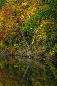 New Creek 7706