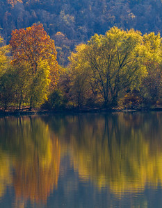 Ohio River Reflection 9462V