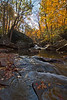 Deckers Creek Autumn 9966