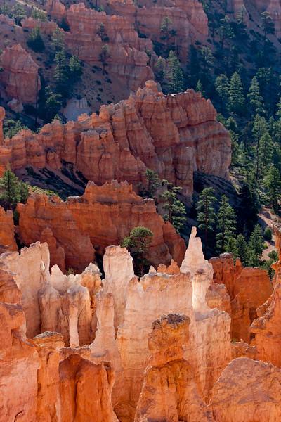 Bryce Canyon 9462