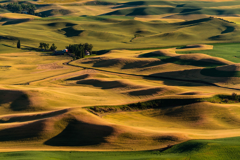 The Palouse 09