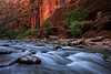 Virgin Narrows Zion 2551