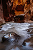 Virgin Narrows Zion 2623