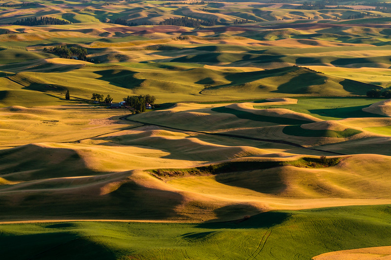 The Palouse 35