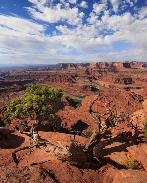 Dead Horse Point 2121