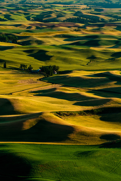 The Palouse 26
