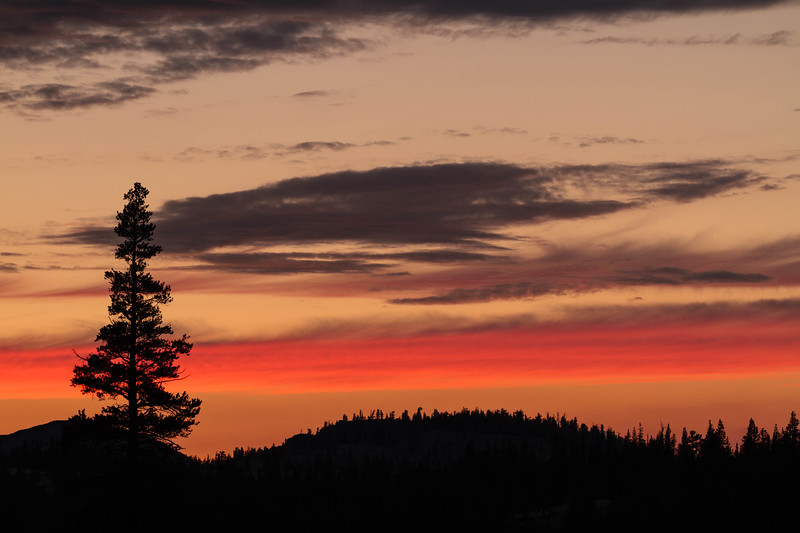 Tioga Road Sunset 05