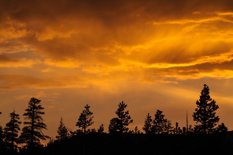 Tioga Road Sunset 01