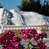 Outside Victorville a Buddhist temple is about five years into a seven year building schedule.