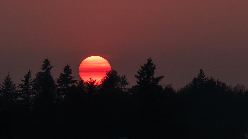 A smokey haze rested, like a veil across the face of the setting sun.
