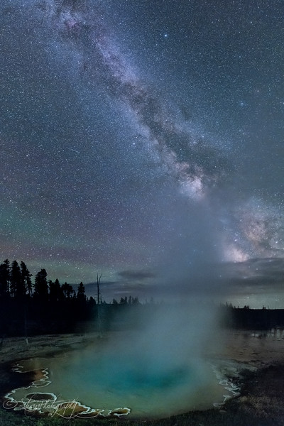 In my dreams - Yellowstone NP, 2016