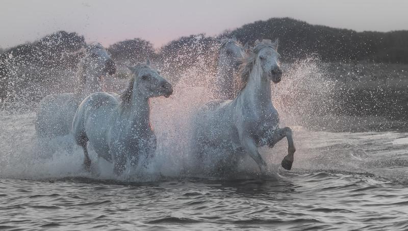 Deep Water Dance