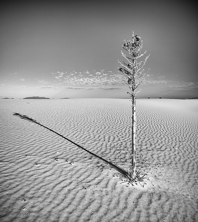 White Sands, New Mexico